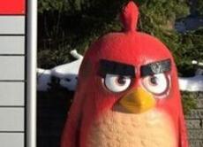 《愤怒的小鸟》开发商Q1营业利润增长近一倍